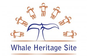 Whale Heritage Site - Azores