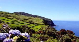 terceira island Azores